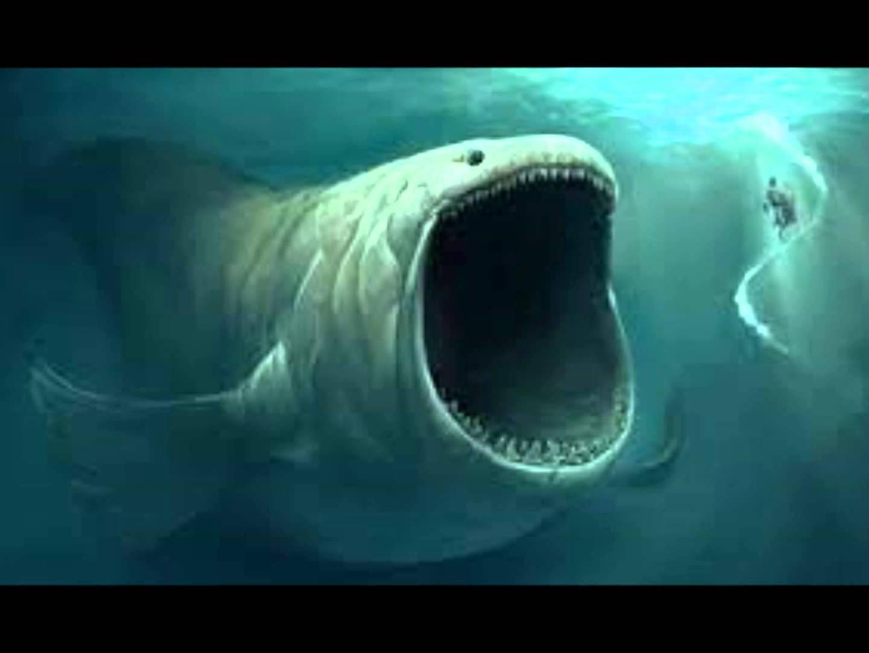 Záhadné zvuky zhlbín: Bloop